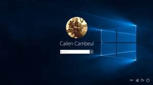 Windows10Login2